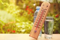 Jakie są objawy wystąpienia udaru słonecznego i cieplnego?