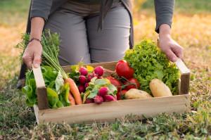 Jakie warzywa i owoce jeść?