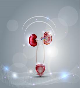 Zabieg RIRS - stosowany przy leczeniu kamicy nerkowej i nowotworów górnych dróg moczowych